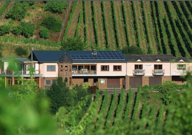 Urlaubsweingut Zecherhof