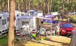 Campingplatz Pommernland - Im Wald