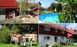 Garten mit Swimmingpool